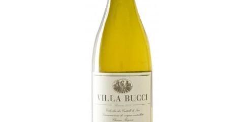 verdicchio-dei-castelli-di-jesi-riserva-2003-villa-bucci